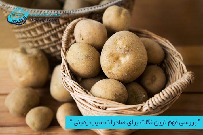 مرکز بازرگانی فردوسی-ferdowsi trading center-بررسی مهم ترین نکات برای صادرات سیب زمینی