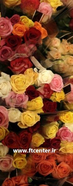 خریدار گل و گیاه صادراتی ایران
