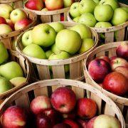 مرکز بازرگانی فردوسی-ferdowsi trading center-صادرات سیب درختی به هند