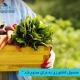 مرکز بازرگانی فردوسی-ferdowsi trading center-صادرات محصولات کشاورزی به عراق