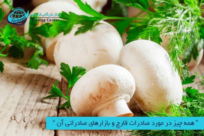 مرکز بازرگانی فردوسی-ferdowsi trading center-همه چیز در مورد صادرات قارچ و بازارهای صادراتی آن